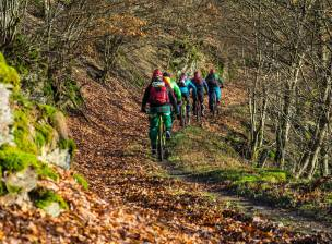 MTB Mosel Indian Summer 6