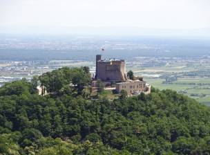 Trailtour Reloaded Pfalz (8)
